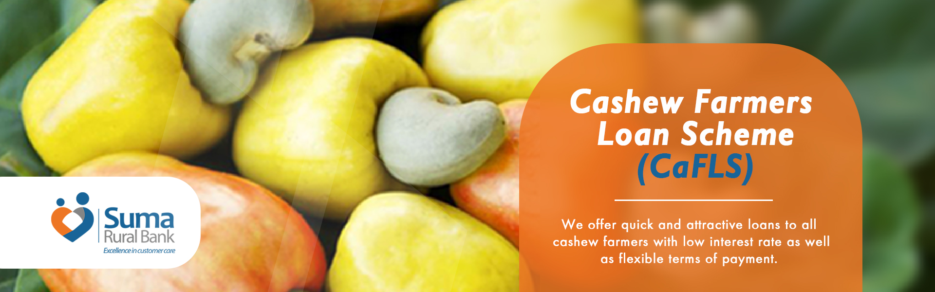 suma Product flyers cashew
